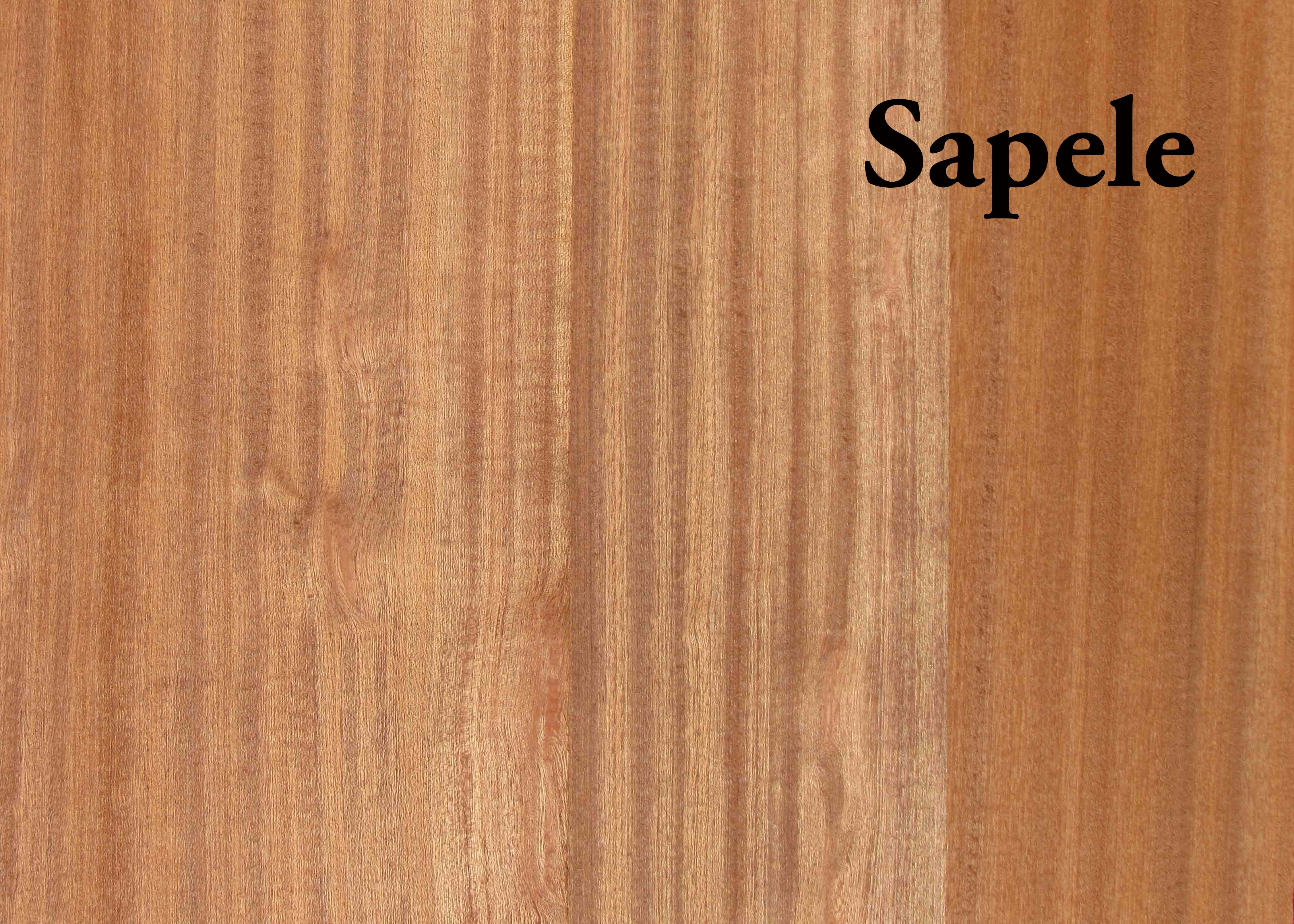 Sapele Qtr Hardwood S2s Capitol City Lumber