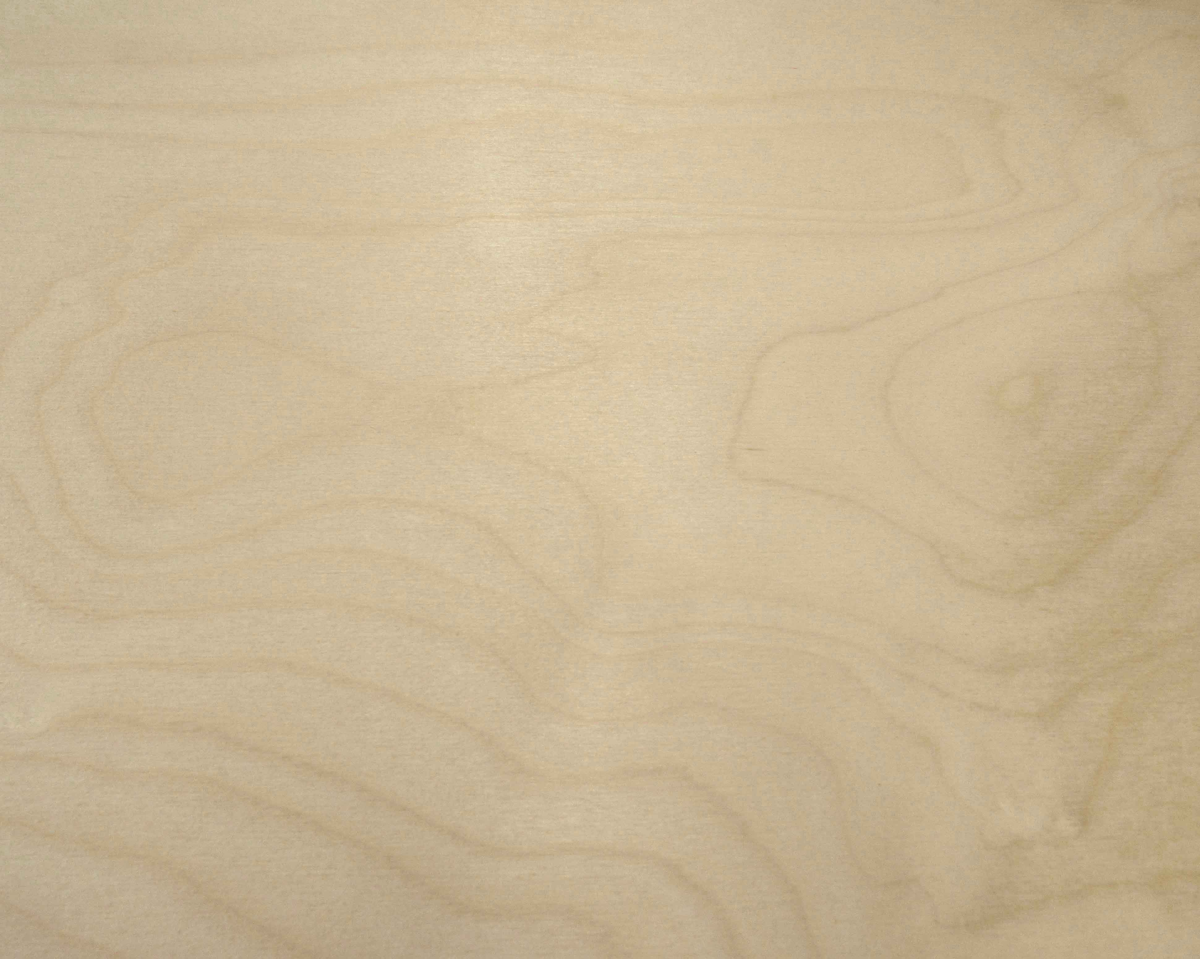 Birch Baltic Plywood Capitol City Lumber