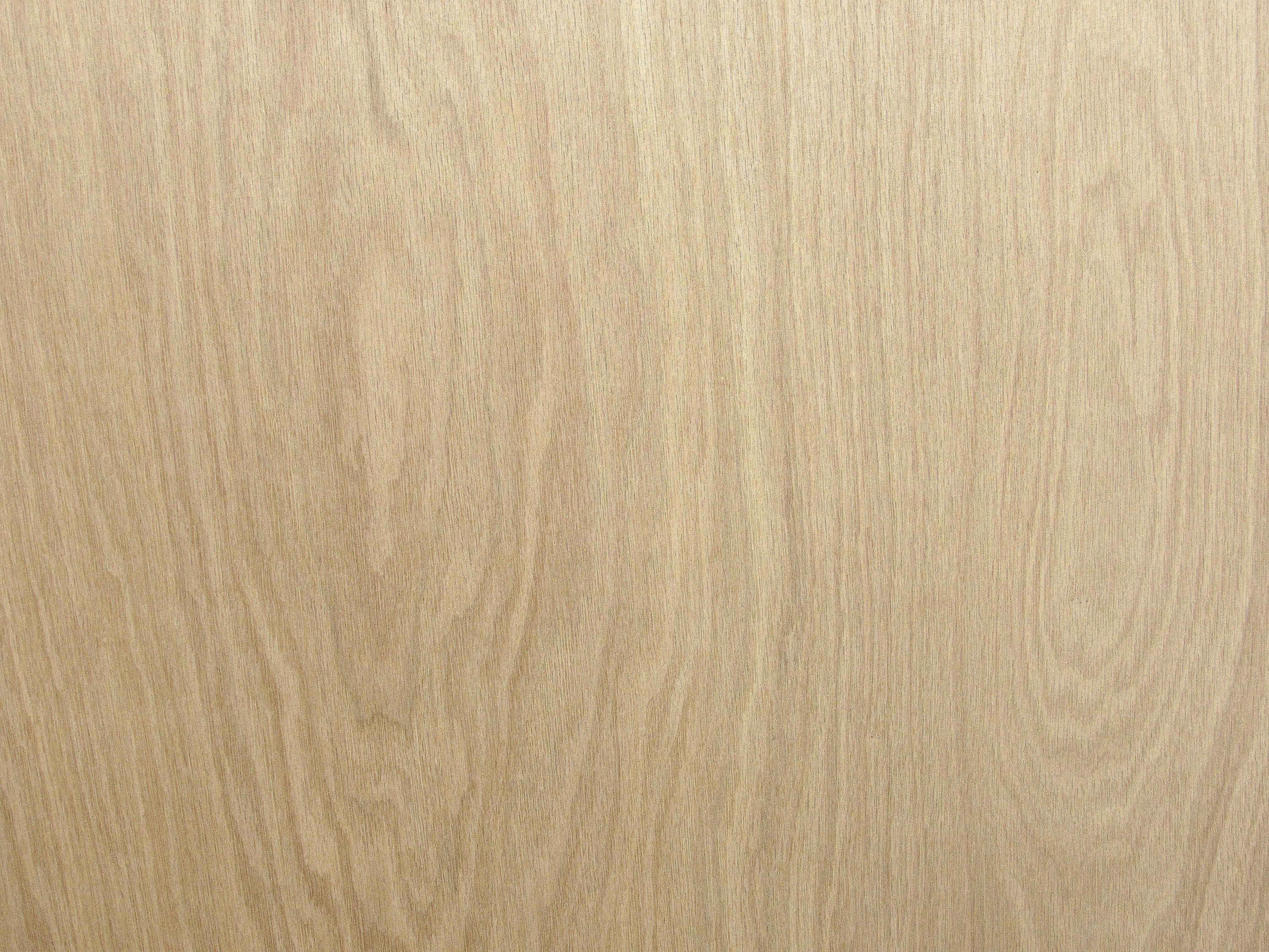 Oak White Plywood Capitol City Lumber