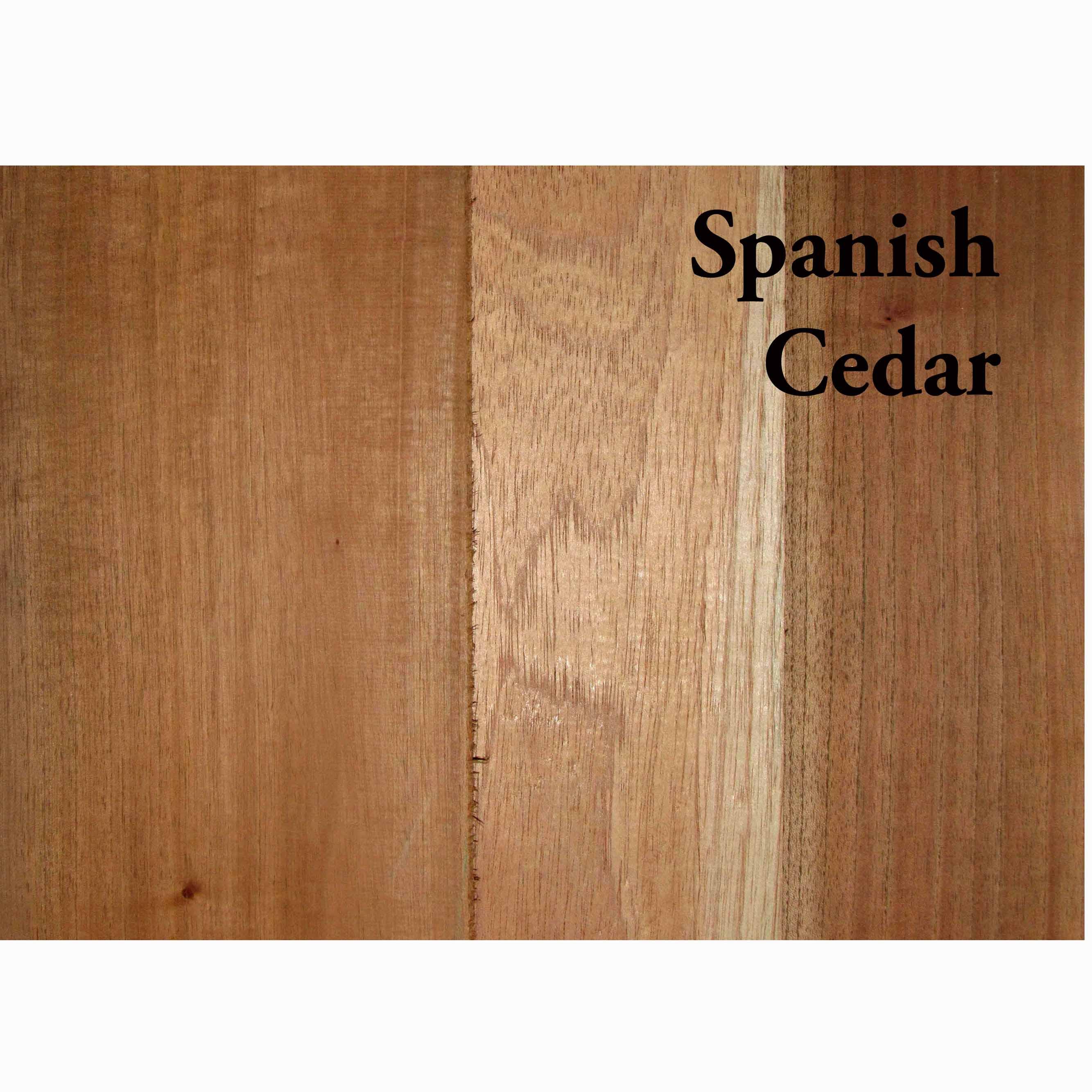 Cedar, Spanish