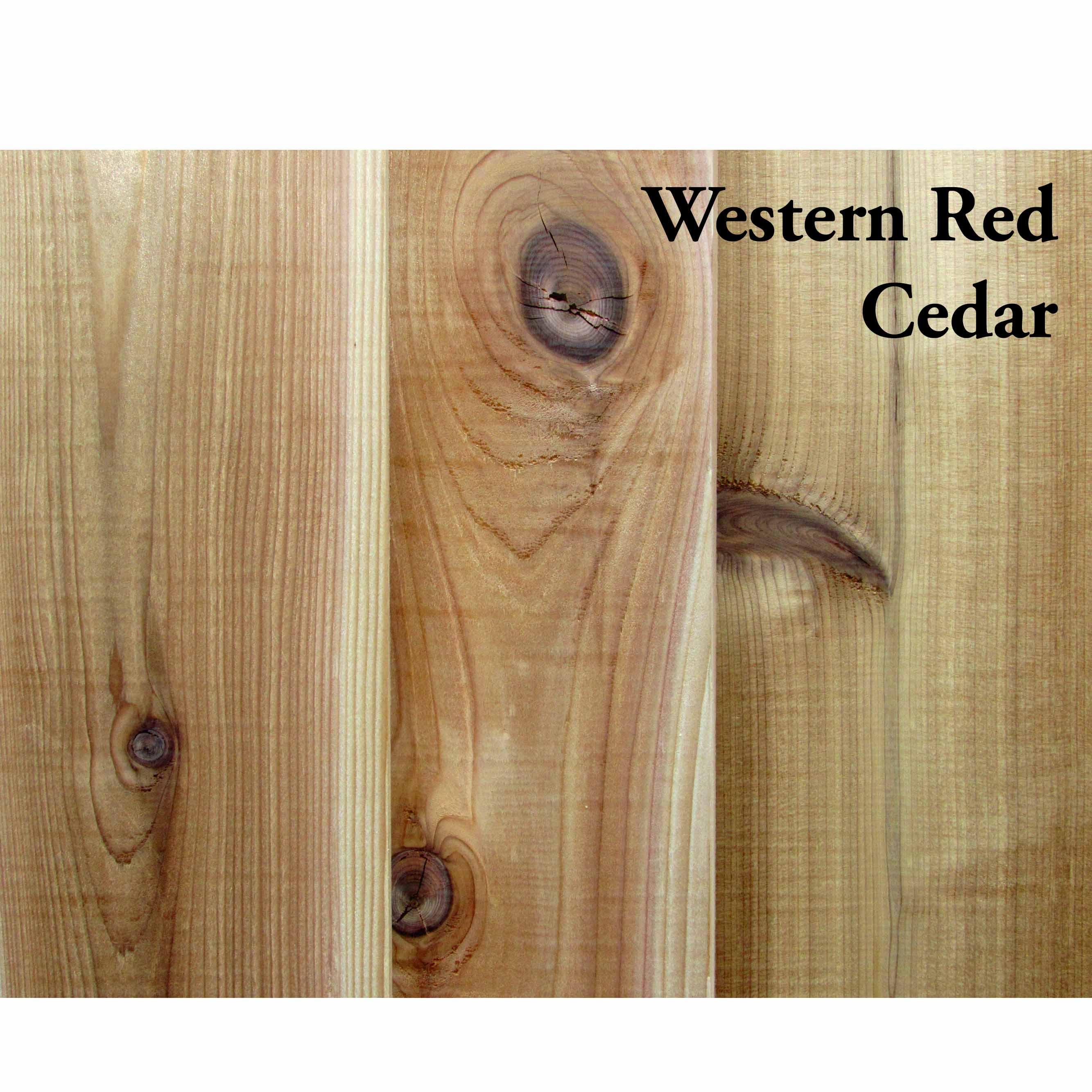 Cedar, Western Red