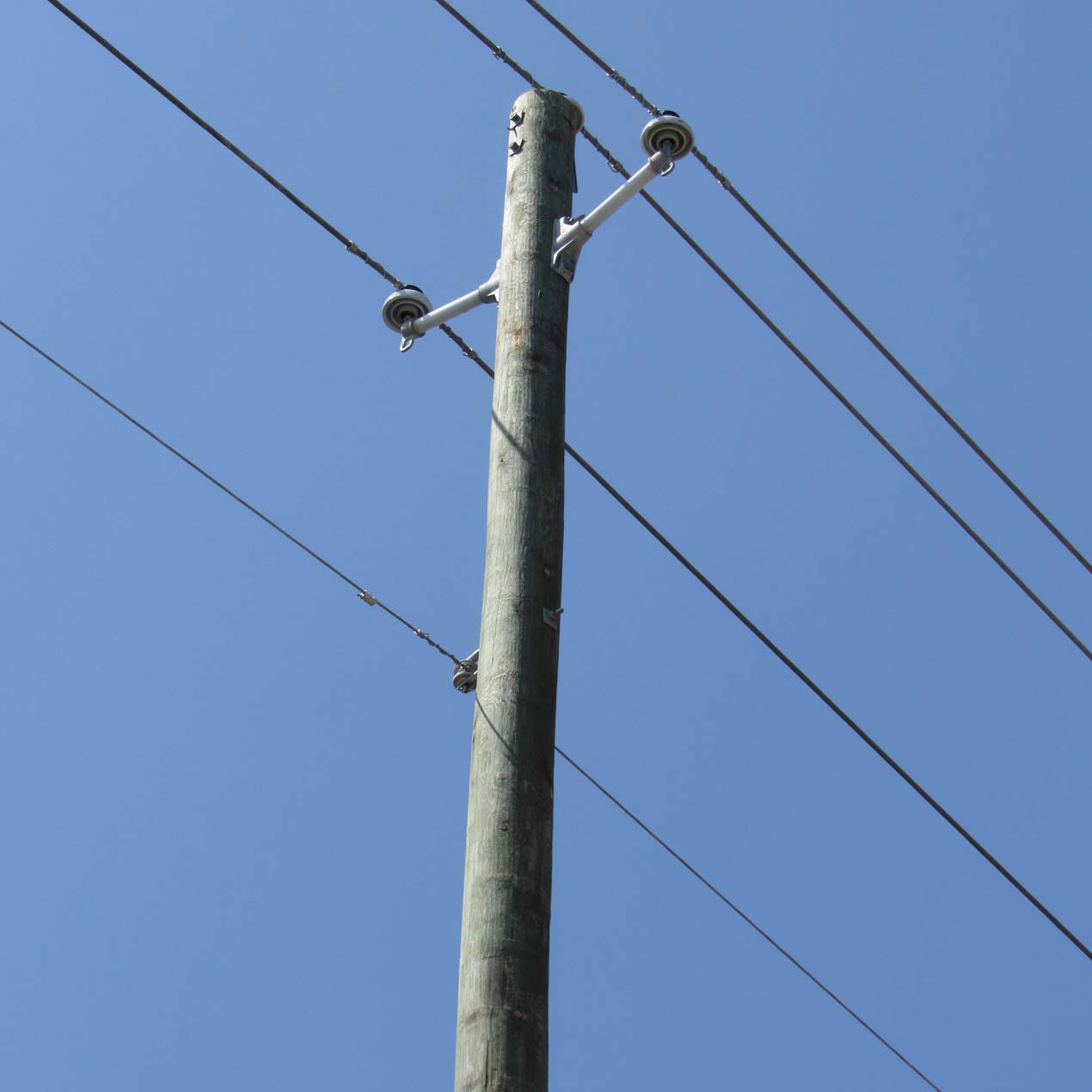 Utility Poles - Capitol City Lumber